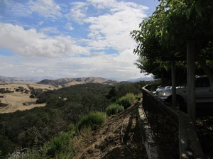 The view from the Calera winery
