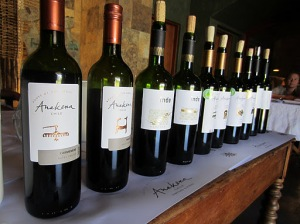 Anakena wines