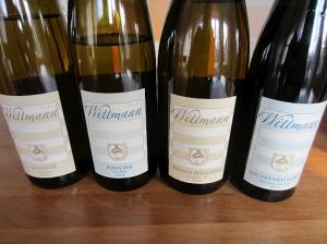 Weingut Wittmann tasting