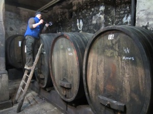 Taking barrel tasting samples