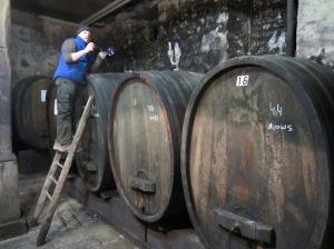 Taking barrel tasting samples