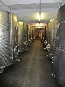 Sepp Moser cellars