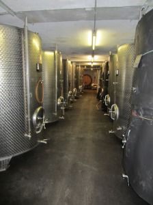 Sepp Moser cellars