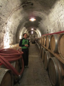 Enrico Coser in the Ronco dei Tassi winery