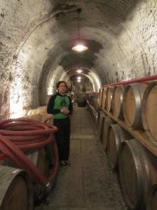 Enrico Coser in the Ronco dei Tassi winery