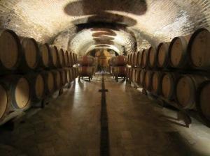 The historic Felsina cellars