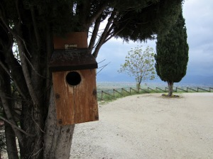 Bird house on the Romanelli estate