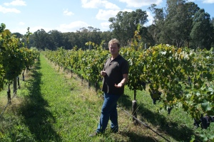 Michael Dal Zotto shows me some of the nebbiolo wines