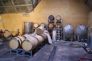 Castagna winery