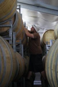 Michael takes a barrel sample
