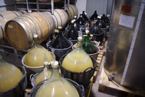 Trial batches fermenting in demijohns