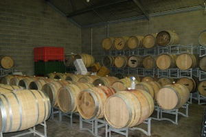 The modest Domaine Epis cellars