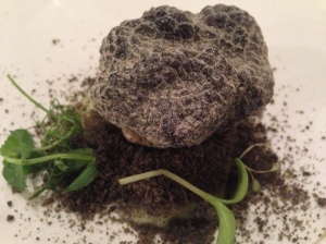 """Summer Black Truffle at Al Pont de Ferr"